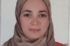 Half-day rate (interpreter): English-Arabic consecutive interpreter in Cairo (Half day)