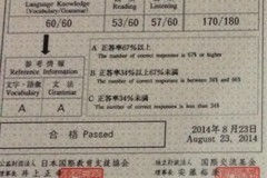 Tarifa diaria (intérprete): Japanese - Vietnamese Interpreter (JLPT N1; BJT J1)